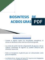URP Biosintesis de Acidos Grasos
