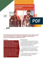 Coaliția pentru Dezvoltarea României - Analiza pieței muncii