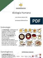 Embriología - Tejido Muscular Esquelético