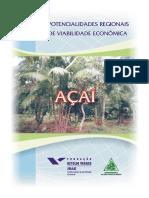 Açaí viabilidade econômica.pdf