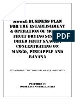 Model Business Plan Mango Pineapple Banana 1 1 1