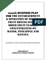 Model Business Plan Mango Pineapple Banana 1 1 1