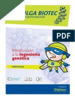Morfologia y Estructura Bacterian