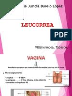 leucorrea presentacion