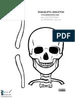 Esqueleto de tamaño real.pdf