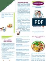 folleto obesidad