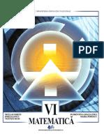 Manual_VI_Ghiciu.pdf