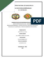 II Informe de Practicas Pre Profesionales