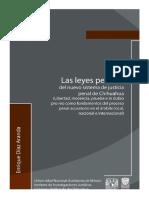 Copia de 31 Las Leyes Penales Del Nuevo Sistema de Justicia Penal de Chihuahua - Enrique Diaz-Aranda