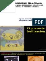 Universidad Nacional Del Altiplano(Paleontologia)