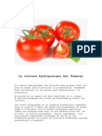 La Culture Hydroponique de Tomates www.mbhuniversity.com