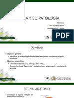 Retina y Su Patología