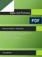 Algae and Protozoa