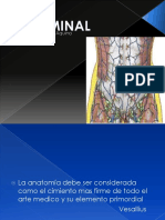 Reconstruccion de pared abdominal