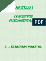 228403877 Canteras en Piura