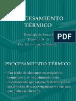 PROCESAMIENTO_TERMICO
