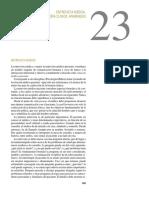 cap 23.pdf