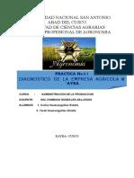 INFORME DE EMPRESA AGRICOLA KAYRA.doc
