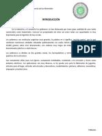 Polimeros (2)