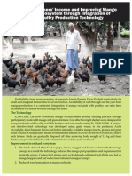 Mango orchard based poultry farming