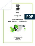 201406070259104211804RS_3_Expert_Group_Report_Oct2013 (1).pdf
