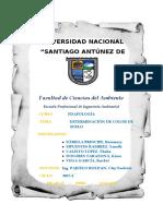 INFORME COLOR DE SUELOS.docx