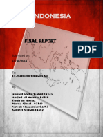 De Report _Indonesia