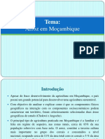 producaodearrozemmocambique-130824054131-phpapp01