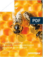 Declinul albinelor-Raport Greenpeace.pdf