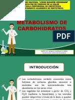 4-METABOLISMO CARBOHIDRATOS P-1 (1).ppt