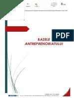 BAZELE-antreprenoriatului.pdf