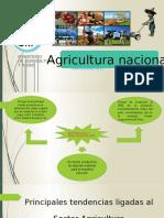 agricultura nacional.pptx