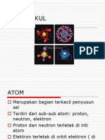 biomolekul.ppt