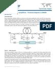 10-EDFA Practical Aspects in DWDM Networks