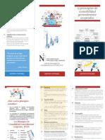 TRIPTICO GESTION CONTABLE - 15 principios de contabilidad generalemente aseptados