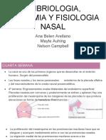 Embriologia, Anatomia y Fisiologia Nasal