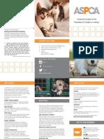 project 3 brochure final