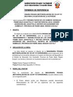 TDR Oruga Papayal 2