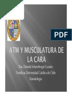 ATM y Musculatura de la Cara.pdf