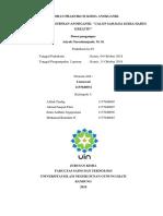 Laporan Praktikum Kimia Anorganik Lisna