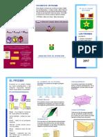 TRIPT DEL PRISMA.pdf