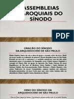 Assembleias Paroquiais Do Sinodo Arquidiocese de São Paulo