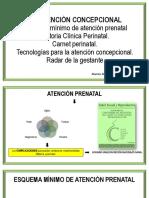 Atencion Concepcional, y Control Prenatal