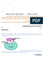 Biology GCSE Unit 2 Part 4 Enzymes and Digestion