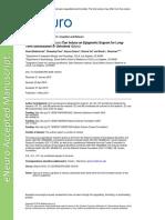 ENEURO.0038-18.2018.full.pdf