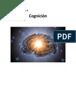 Qué Es La Cognición