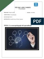 Resumen Neuropedagogía Del Aprendizaje