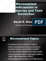 Micronutrient Deficiencies in Blueberries and Their Correction Dr. David Kissel University of Georgia Athens GA