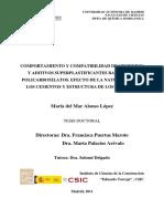 39592_alonso_maria_del_mar.pdf