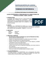 TDR Residente de Obra